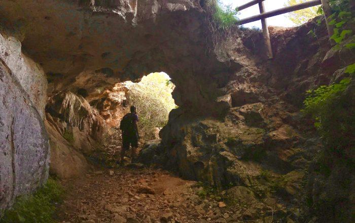 La cova del gamell